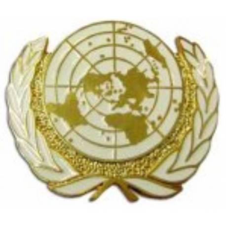 PLACA ONU